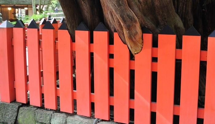 Красиво окрашенный забор