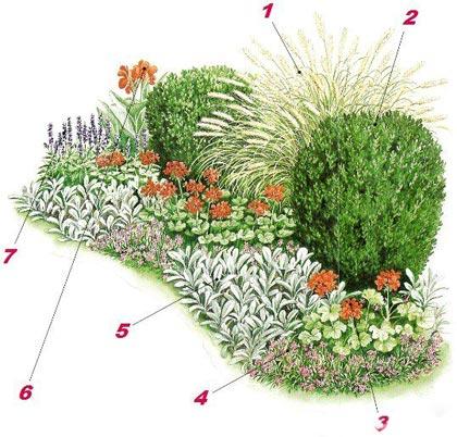 Миксбордер из неприхотливых растений