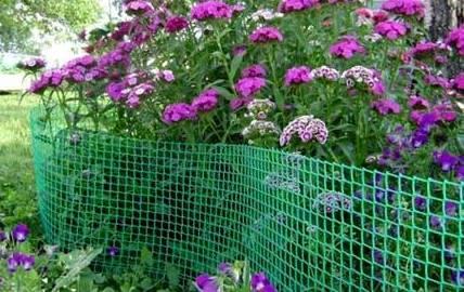 Ограждение цветника пластиковой сеткой