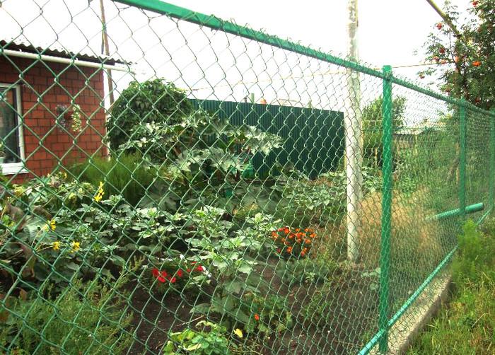 Забор из сетки рабицы зеленого цвета