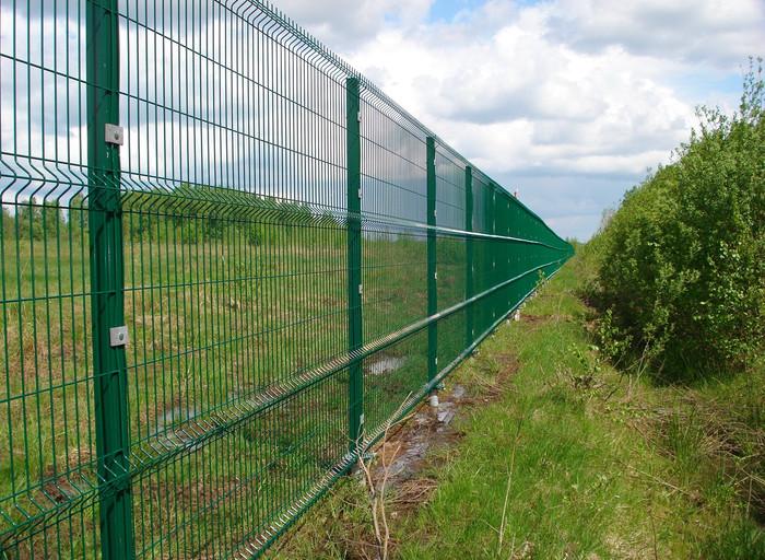 Зеленый забор из сварной 3д сетки