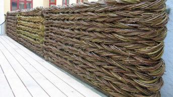 Забор — плетень из лозы